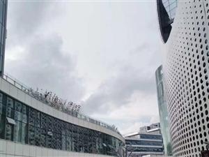 中�F央企,�R街商��K身包租8年回本