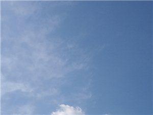 十二生肖云朵??