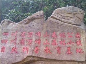 万峰山森林公园
