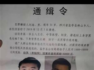 通缉令更新!盐亭逃犯刘海,赏金最高增至50000元!!