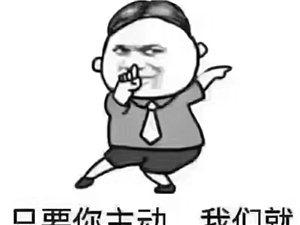 高州碧桂园凯旋华府新品发布