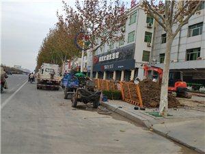 乐安大街一些门店前都在施工,有知道这是在干啥的不