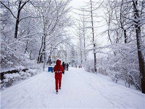 冬天�想�c一��人�P守到老,秋天�想�c一��人挽手�s��,希望不久,你是一朵雪,�刃挠肋h清芬��白。是一朵