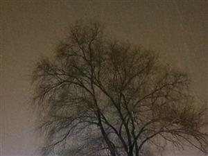 风雪夜色美