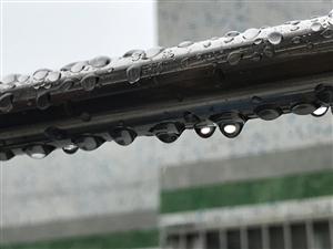 珠海,���多月�]有下雨,今天�K于下雨了,愉快�。�!