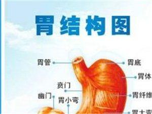 �u丙�x健康�f:胃痞篇(胃病)