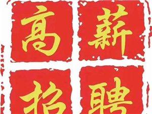 中国联通公司招聘