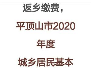 2020年�t保�U�M�r�g延�L,�]�淼眉袄U�M的��P注