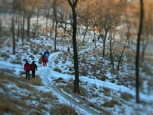 登高望远促健康,新年生活节节高。