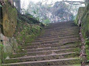 那条青石板路三十年前的青石板石梯还静静地在那儿躺着,连续不断地迎接着来自四面八方的游客拜谒古邻州的