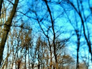 冬日暖阳~