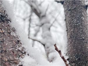 雪景―角落