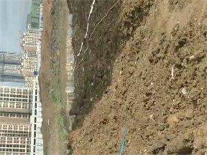 龙凤大型游泳场已正式开工建设!