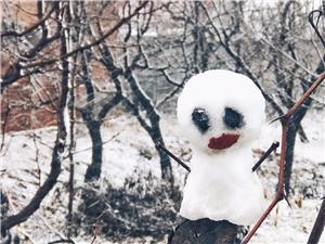 陪我看雪??