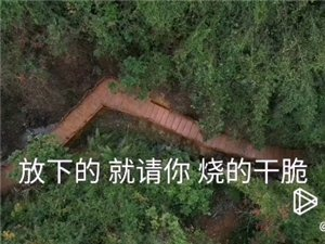 安溪网红景点打卡―安溪钟显堂木栈道航拍风景