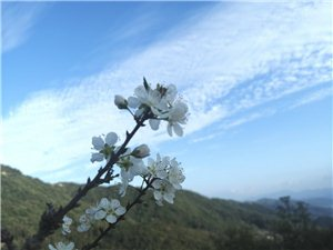 普��徐良山