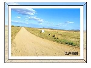 盛夏时节,金莲川草原上的情怀(图片效果有后期制作)