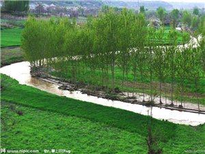 那是一条小河�D�D季语秦那是一条小河,从上古走来,携着神农的梦想,涓涓流过。两岸舒展着