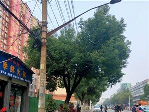 春节期间潢川城区即将亮起来