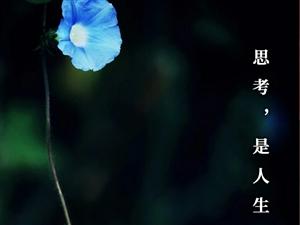 思考,是人生的一种沉默。