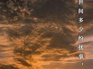世间多少纷扰事,浮华落尽总随风。