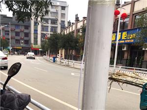 城区为增加春节气氛路灯上安装节日灯笼,但安装的电线存在安全隐患,因安装固定不牢靠容易被刮扯,会造成触