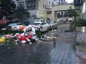 万泰二期大年三十,成了堆放垃圾场,反映无人解决,无人管,与大邻水创卫背到而池,社区、环卫你们看见了吗