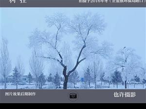 外景(那达慕会场及小扎格斯台淖)春节五组(共计45幅图片,供大家欣赏)