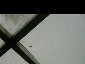 �化玻璃,6�K,�p��