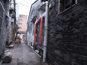 春�假期里最美的保���T拍�z地�c:珠海市高新�^上�糯迮�z�r�g:2020年元月26日年初二�z影:#