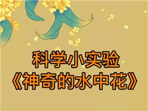 空中�n堂|科�W小���《神奇的水中花》