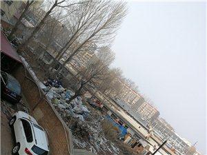 建安家园北墙外大堆垃圾,呼吁有关部门重视群众健康问题