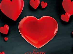 情人节红尘浪漫情人媚,玫瑰独俏玉颜欢。年年笑醉芳姿丽,岁岁痴迷花色宽。