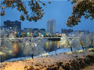 五�^.春雪