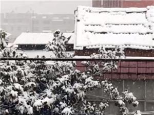 疫情下的潢川下雪天