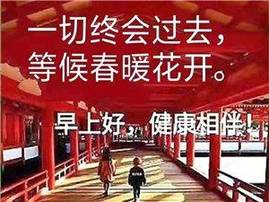 【原创】宅年絮语//不寻常的春节(一)