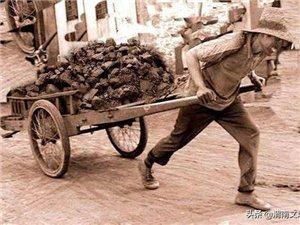 在澄城煤矿拉煤炭的那些日子