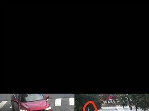 奥园入口这个红绿灯路标设计是否有问题?