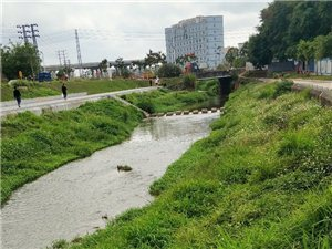 多年以后……青山绿水长流