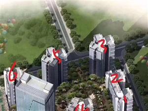 星河国际抵工程款酒店式公寓,直接改名免过户,住家办公任君选择!黄金中层56.43平米36万