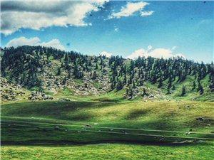 新疆的风光