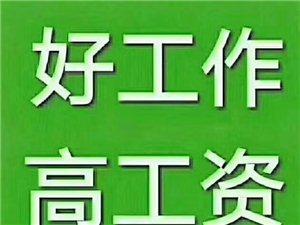 山阳县城招收55岁以下男保安,月�Y二干至二干二百元。另招收55岁以下男女保洁员,月�Y一干五至二干元。