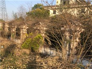 潢川火�站依山傍水的�e墅�有�X人扔了!可惜啊