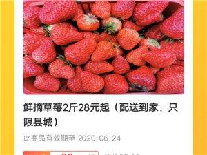 �r摘草莓2斤28元起(配送到家,只限�h城)