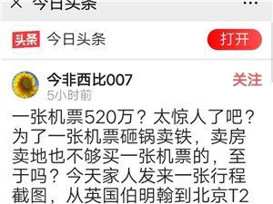 还是我们的国家强大,一张飞机票能炒到几百万,扁着头往北京挤。