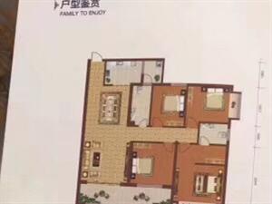 帝景湾朝南4房,升官发财楼层,七米大阳台130平方,朝南,户型超漂亮,过户便宜