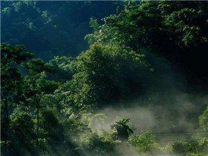 季�Z秦心�Z(第七期)(10)站在春天里思索人生,就像把自己融�M冰消雪化叮咚作�的小河,步履是�p盈
