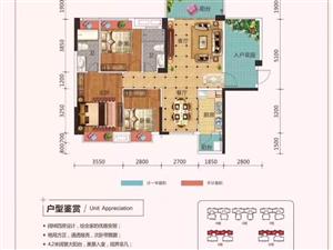 泰和江畔全新毛坯,建面118平方,3+1户型。完美户型