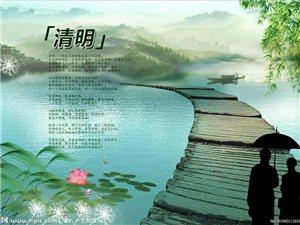 《清明雨》文/郑富民