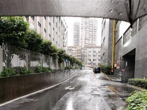 清明�r�雨��,周日加班工作模式�_��